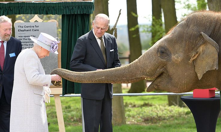 The Queen meets baby elephant named Elizabeth