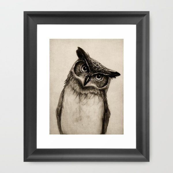 owl sketch framed