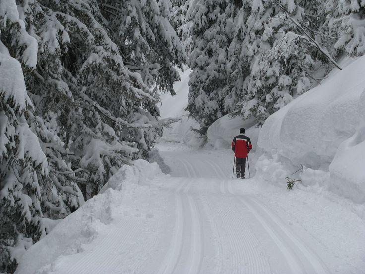 Winterwandern in den Montafoner Bergen in Österreich  https://www.kristberg.at/winter-montafon-winterwandern.html
