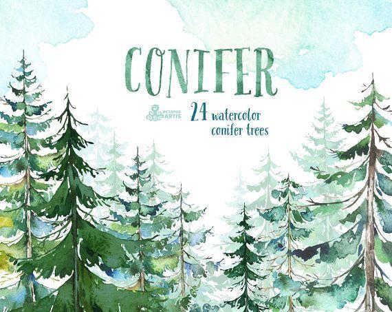 Nadelbäume. Aquarell-Kiefer, Fichte, Wald, Holz, Landschaft, Frame, Zitat, handgemalte Cliparts, Grußkarte, diy ClipArt Weihnachten