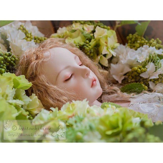koitsukihime doll type Shateiel #doll #koitsukihime #bisquedoll #artdoll…