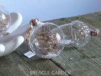 Bal glas groot