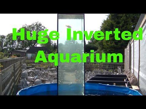 2016年7月3日 fish tower - YouTube