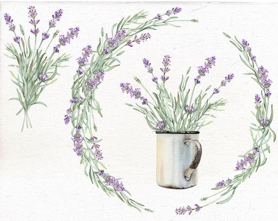Geometric frames Watercolor clipart Lavender and  Cotton