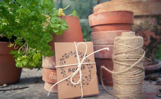 Cum să recoltezi corect semințele de flori şi de legume!