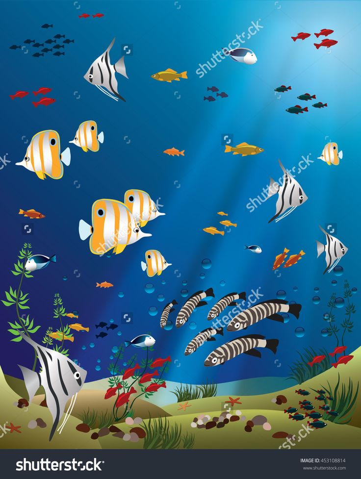 Tropical Fishes Bottom Of The Ocean Stock Vector Illustration 453108814…