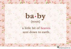 """""""Baby, Noun"""" - cute quotes about pregnancy on floral background"""