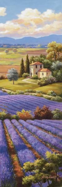 Sung Kim - Fields Of Lavender I - Fine Art Print - Global Gallery
