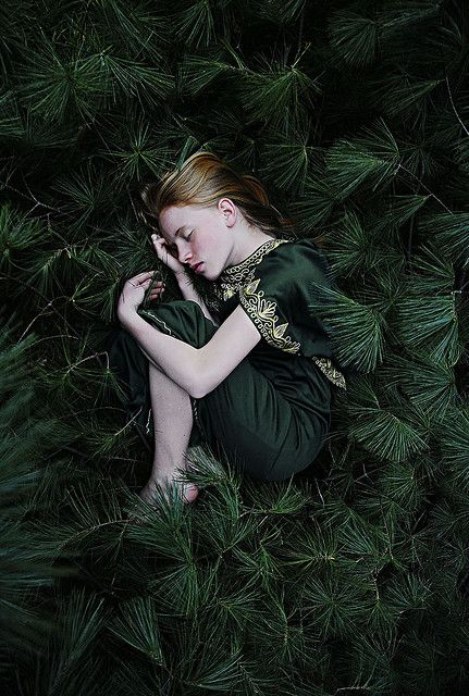 Sleeping Beauty amongst green pine boughs.