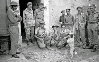 Nuova Zelanda e truppe greche fronte vicino a Rimini Italia 21 settembre 1944_rimini foto di guerra