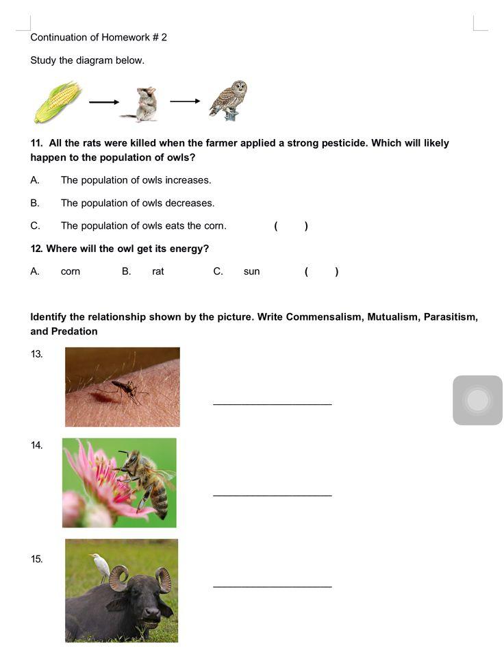 Homework # 2, Continuation...