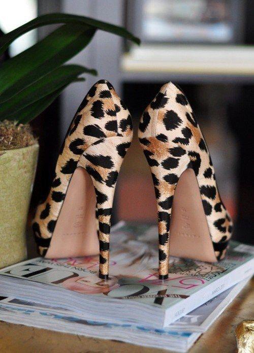 leopard stilettos - let your wardrobe sizzle from head toe!