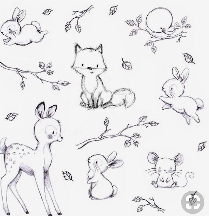 Pin By Lucie Davis On Skolka Worksheets Baby Animal Drawings Cute Sketches Animal Sketches