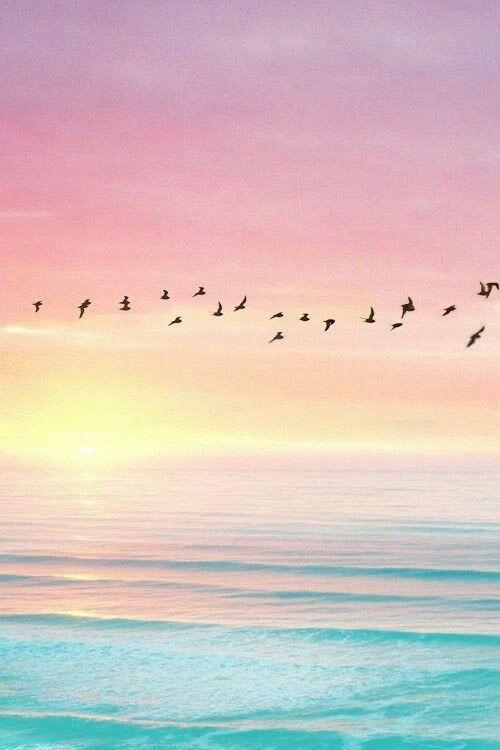 Pastel sunset 🌅 siga-me no Pinterest para estética mais linda @LifeInBl …