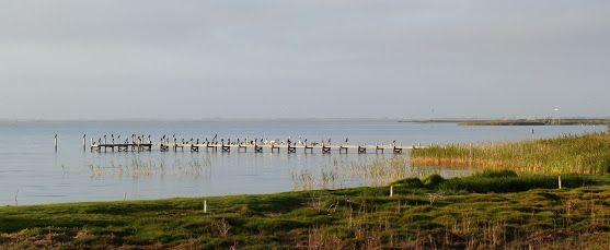 Lake Alexandrina, South Australia