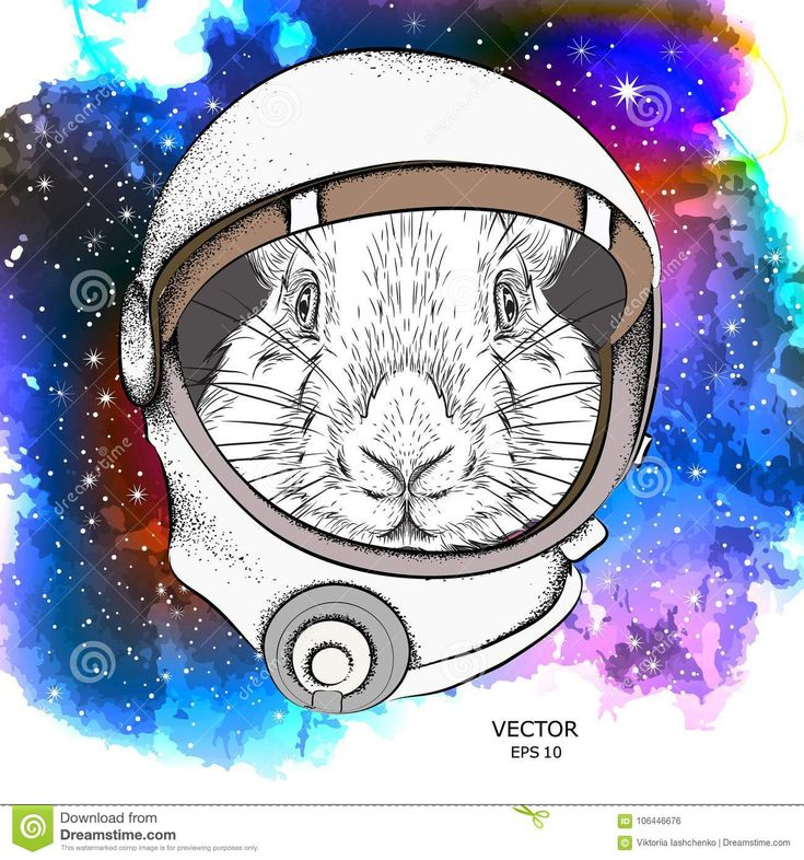 rabbit astronaut Google Search Rabbit, Anime, Astronaut