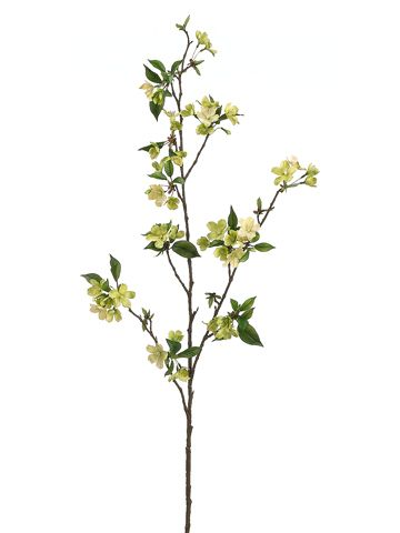 Pear Blossom Spray in Two Tone Green 46in. Tall