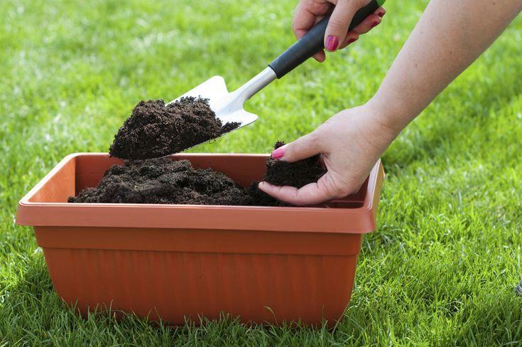 Cómo hacer mantillo para plantas