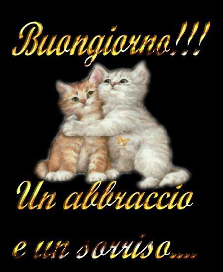 Un abbraccio e buongiorno buongiorno pinterest un for Buongiorno con gattini