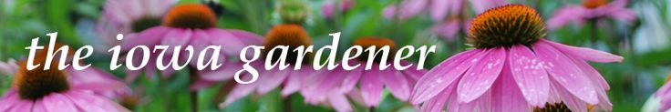 The Iowa Gardener: A calendar that tells what to plant each month. Website gives general gardening tips as well.