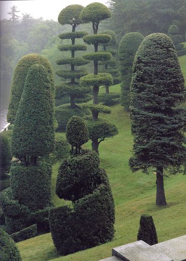 Hunnewell Estate, Wellesley, Massachusetts - Topiary in the Hunnewells' terraced Italian Garden. The tallest trees are native white pines, clipped once a year.