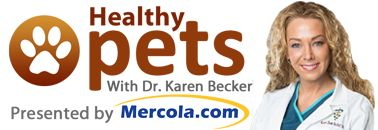 Mercola Healthy Pets How to naturally treat seasonal allergies in pets http://healthypets.mercola.com/sites/healthypets/archive/2011/07/05/valuable-nutrients-for-pets-who-suffer-from-seasonal-allergies.aspx