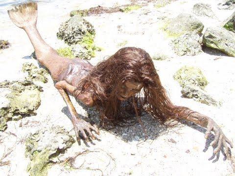 ¡DE ÚLTIMA HORA! ¿La Sirena encontrada en México es real? ¡ACLARACIÓN!