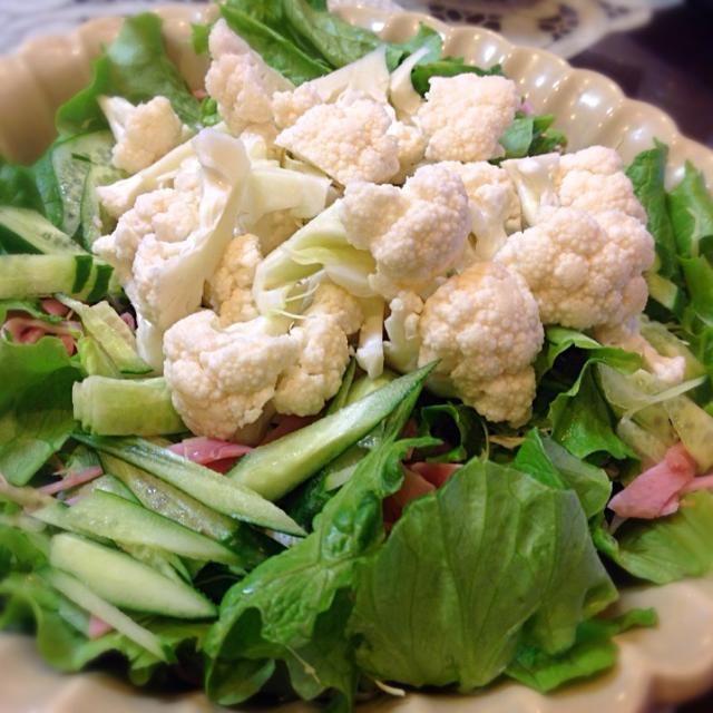 久しぶりの生カリフラワーサラダ やっぱり、この食感最高じゃ〜(笑) - 92件のもぐもぐ - 生カリフラワーサラダ(我が家のブーム) by drhasimoto