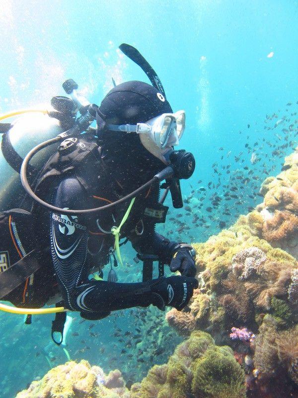 Pin By Dre On Scuba Girls Scuba Diving Courses Scuba Diving Bali Best Scuba Diving