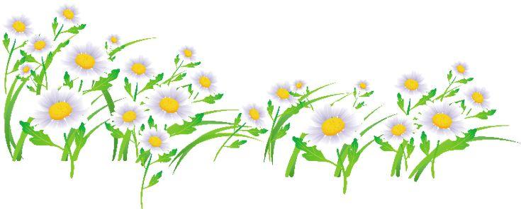 Flores Ilustraciones Png Para Artesania: 267 Best Images About Imágenes Flores On Pinterest