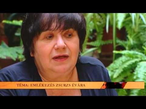 Kultúrmorzsák 2014.06.18. hatoscsatorna