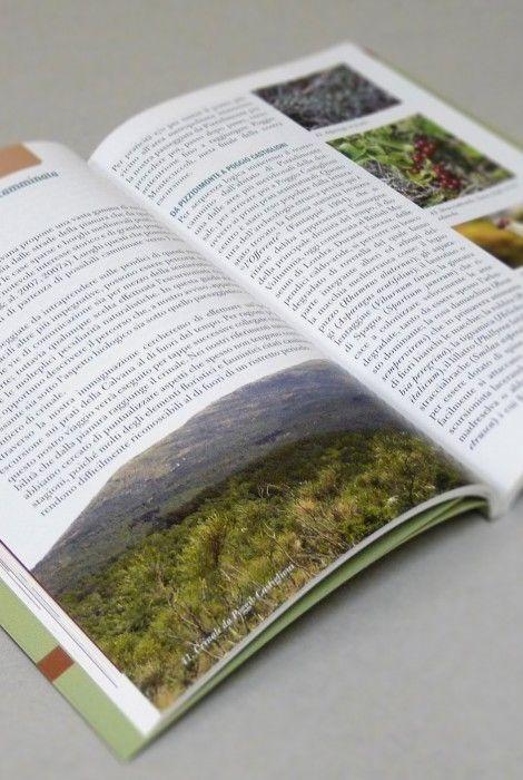 Libro Guida naturalistica dei monti della Calvana - ambiente - territorio - Toscana