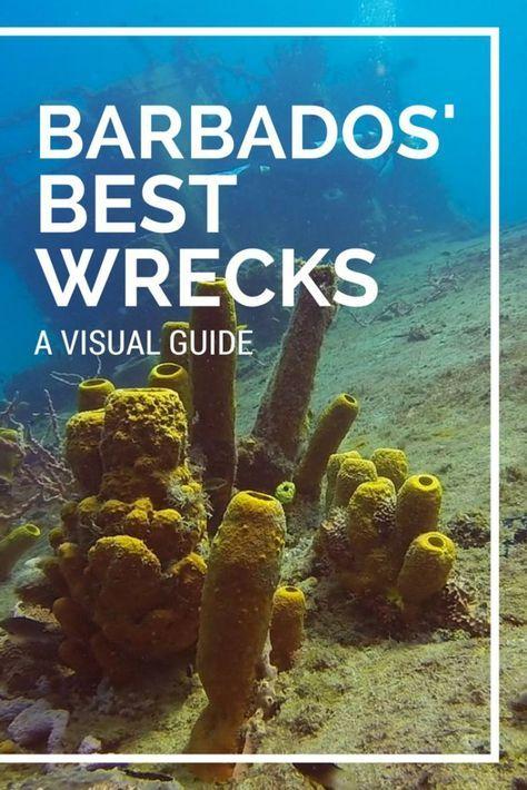 VIDEO post - Barbados' Best Wreck Dives: Diving Carlisle Bay #Barbados…