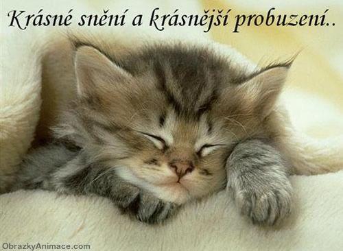 Dobrú noc a krásne snenie, ráno ešte krajšie prebudenie :)