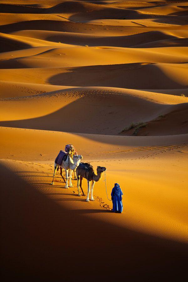 "oriental-sunrise: "" Sahara desert, Morocco """