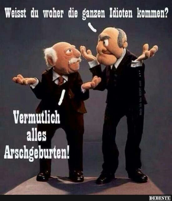 1000 Ideas About Statler And Waldorf On Pinterest: 37 Besten Waldorf Und Statler Bilder Auf Pinterest