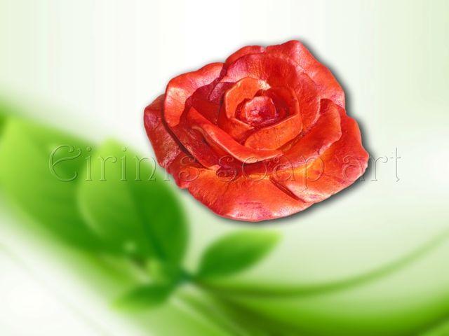 Rose 2 soap