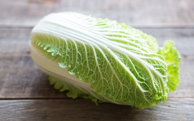 Organic Napa Cabbage