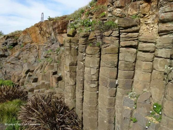 Rock Columns at Burnie Tasmania 7.2014 photo credit to Murrays Day out tasmania
