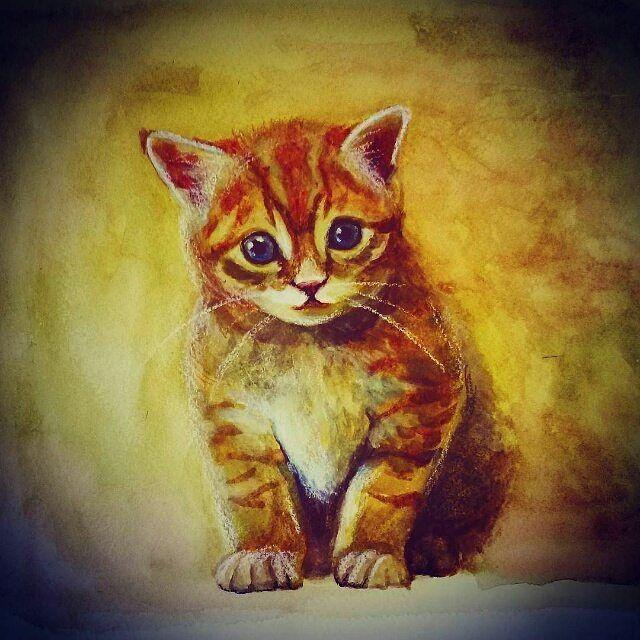 #droolyapp @3s2v  #шпиц #dogsofinstagram #drawing #oilpainting #illustration #dogs #funny #animal #собака#кошка #котенок #питомец #кот #одеждадляживотных #дворняга #art #artist #любимый #животные #justartspiration #justartsogram#kitties #catsofinstagram #cartoons