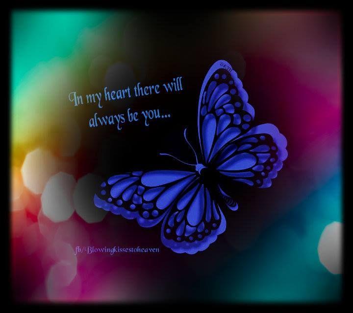butterfly heaven wallpaper - photo #37
