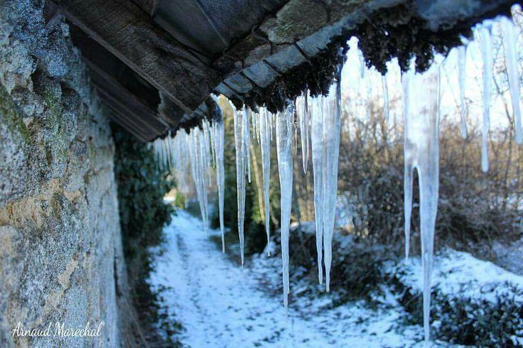 Cette année l'hiver a les dents longues.   #hiver #winter #creuse #limousin #nouvelleaquitaine #stalagtites #onthewall #surlemur #chemin #way #neige #snow