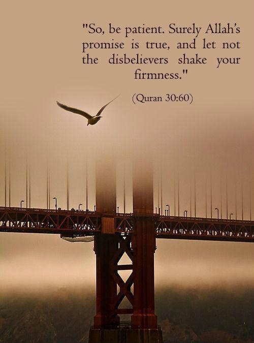 Quran 30:60
