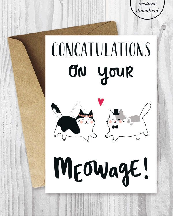 Wedding Card Printables Marriage Cards Funny Cat Congratulations Instant Download