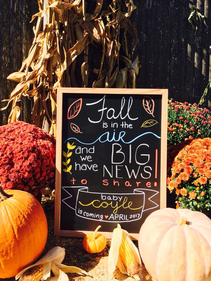 Our fall pregnancy announcement!