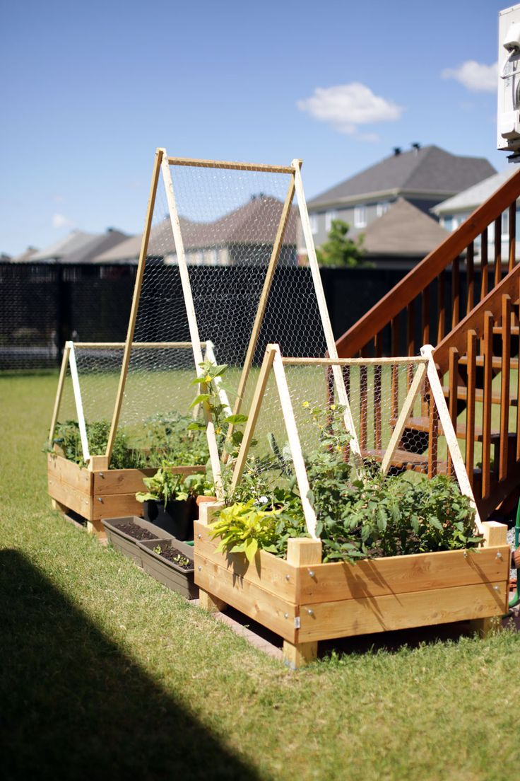 How to build a vegetable garden box - Ana White Diy Garden Box With Trellis Diy Projects