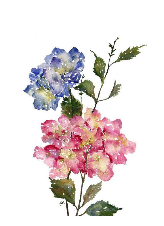 Hydrangea Watercolor Fine Art Print Watercolor Flowers Hydrangeas 8x10 11x14 Watercolor