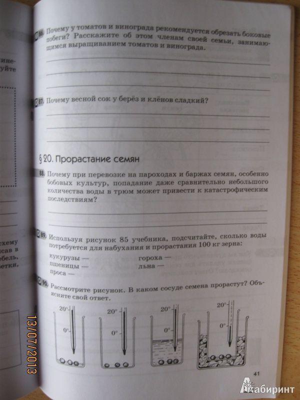 Решебник по литературе 11 класс смирнова михайлов