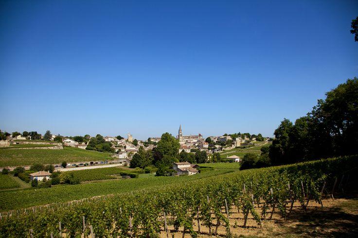 Le château la Gaffelière sera ravi de vous faire découvrir son vignoble, pour cela il suffit de réserver votre visite gratuitement avec Wine Tour Booking