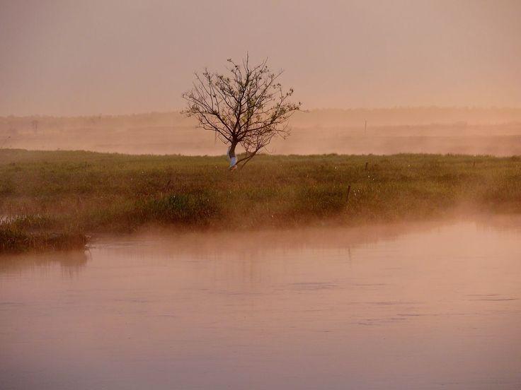 Biebrza - Tratwy, Kajaki, Spływy, Noclegi, Agroturystyka | W poszukiwaniu zaginionego świata